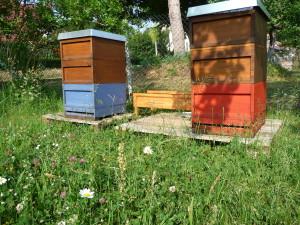 Bienenstand Ernstroda